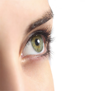 eyelash-treatment-image